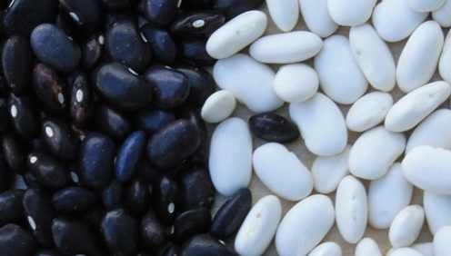 What to eat foraq Flat stomach. Beans